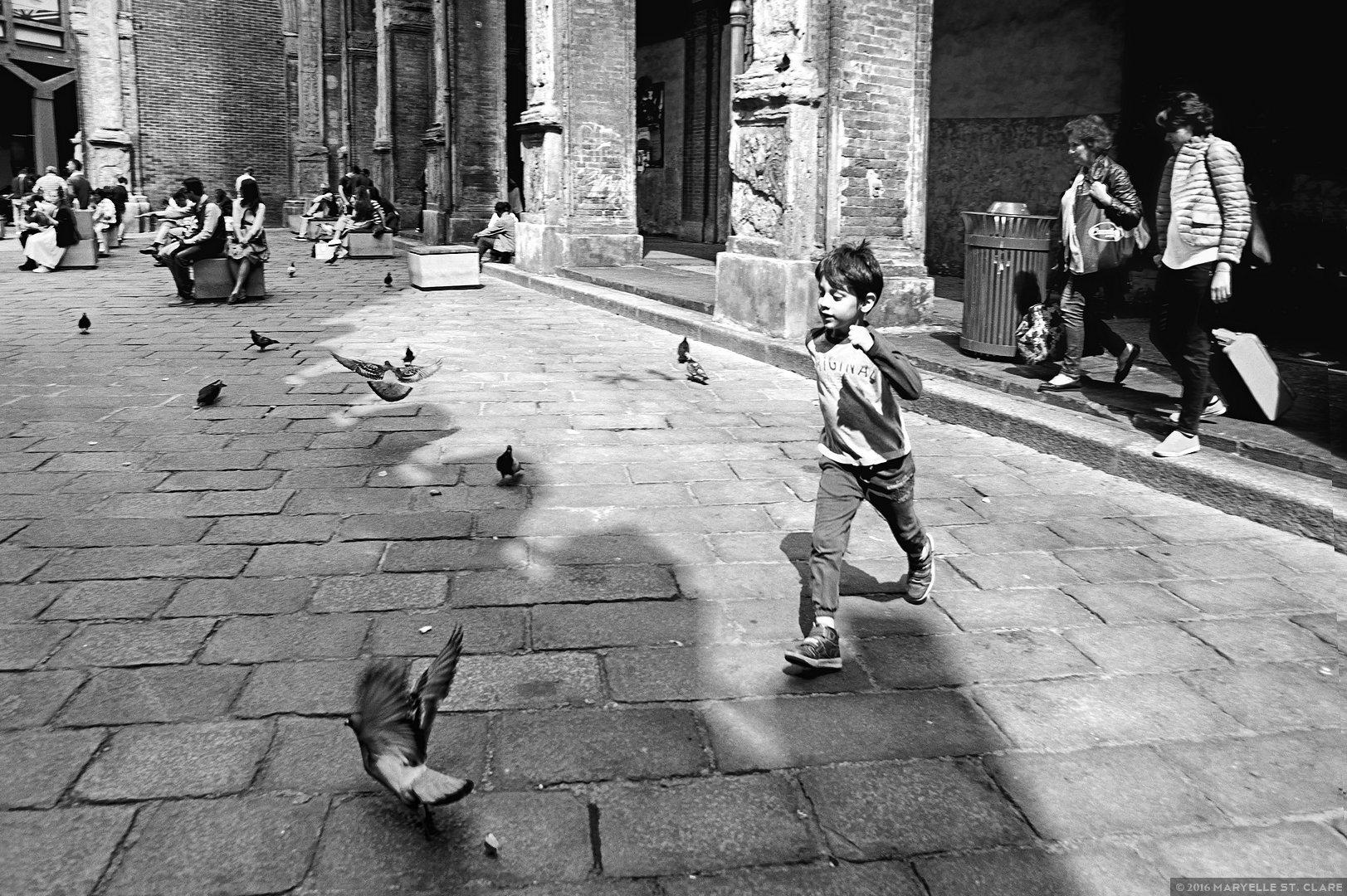 Bologna, Italy. 2016.